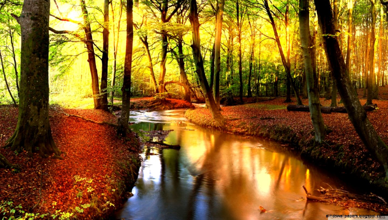 Landscape Fall Wallpaper Hd | All HD Wallpapers
