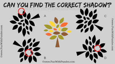 Answer of Brain Teaser Shadow Picture Riddle