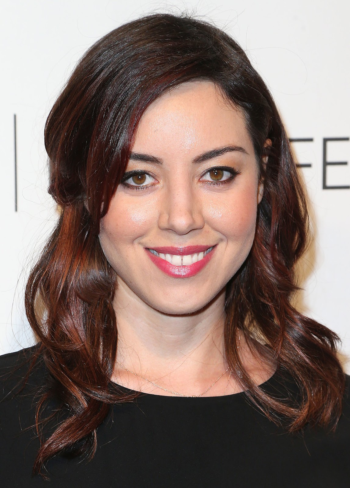 Aubrey plaza the to do list 2014 - 1 5