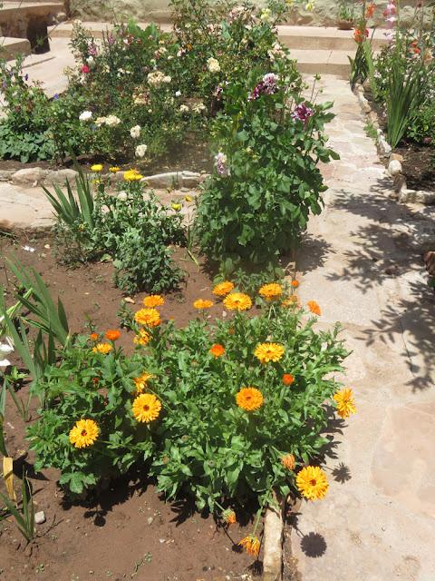 Der Blumengarten ist mein kleines Paradies