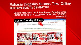 Sukses Bisnis Dropship Toko Online