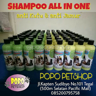 shampoo all in one