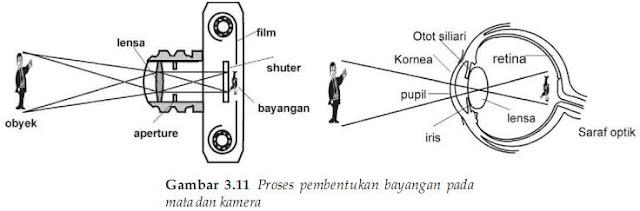 Proses pembentukan bayangan pada mata dan kaca mata