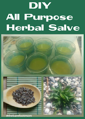 DIY All Purpose Herbal Salve from The Barefoot Mom