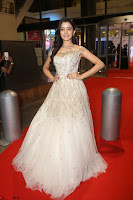 Rukshar Mir designer Anarkali Gown at 64th Jio Filmfare Awards South  2017 ~  Exclusive 085.JPG