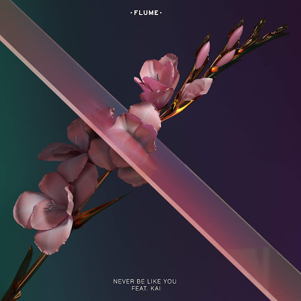 Flume - Never Be Like You (feat. Kai) - Single Cover