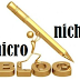 Como Monetizar Micronichos o pequeños Blogs