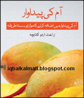 Mango cultivation and farming Aam Ki Kasht
