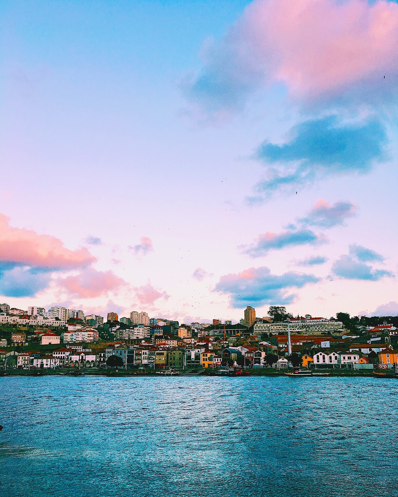 Porto: Lisbon And Porto Food Guide
