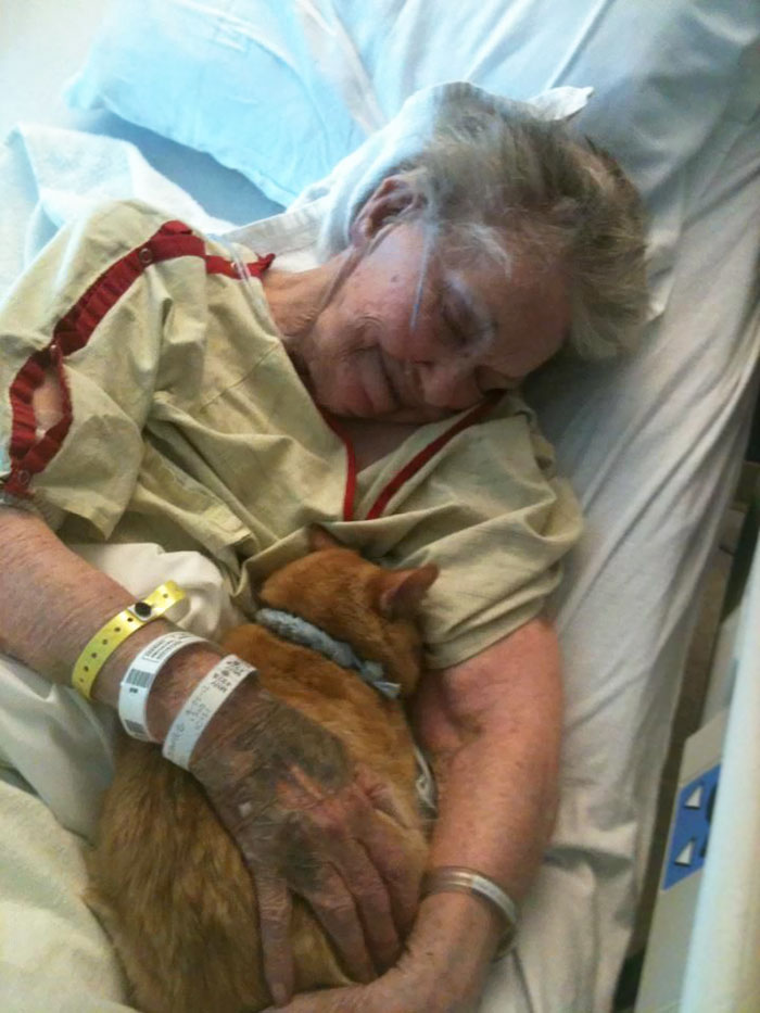 36 People's Heart-Breaking Last Wishes - Her Final Wish Was To See Her Best Friend, Oliver The Cat, For A Last Goodbye