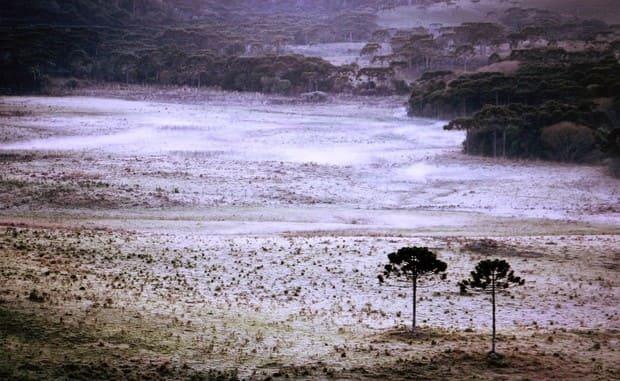 Santa Catarina registra geada na primeira semana da primavera