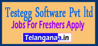 Testegg Software Pvt ltd Recruitment 2017 Jobs For Freshers Apply