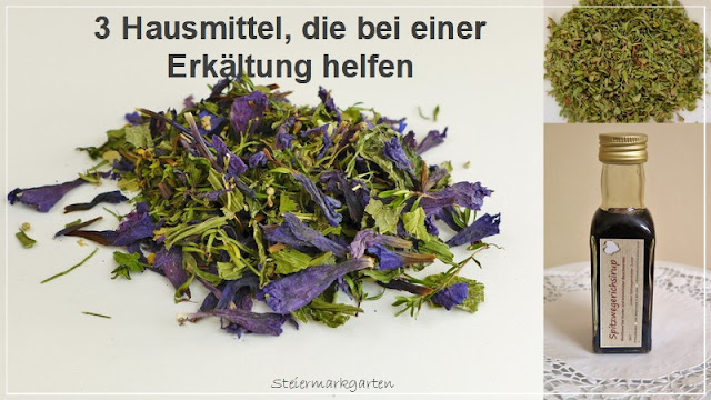 3-Hausmittel-die-bei-einer-Erkältung-helfen-Pin-Steiermarkgarten