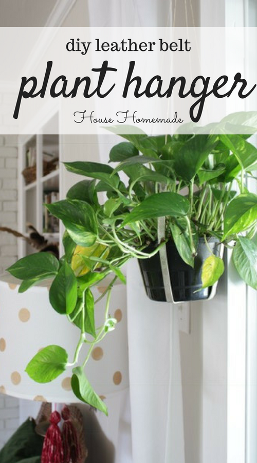 Re-purpose an old or thrifted leather belt into a simple plant hanger