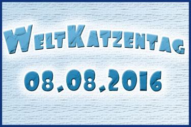 Weltkatzentag 2016