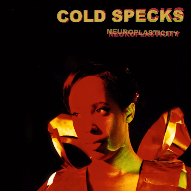 MusicTelevision.Com presents Cold Specks music videos off Neuroplasticity album