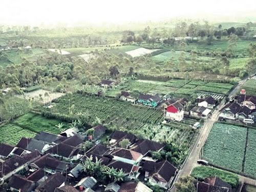 Kampung Agro Wisata Cibuluh Kabupaten Bandung