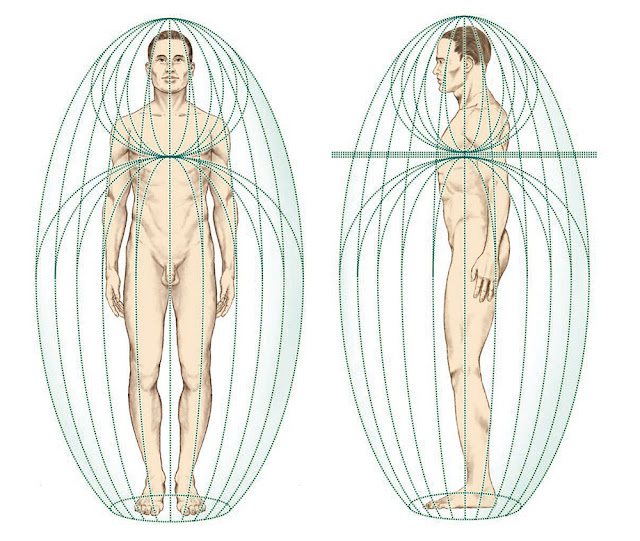 A Complete Guide to the Human Energy Fields and Etheric Bodies Assemblage-point-human-biofield