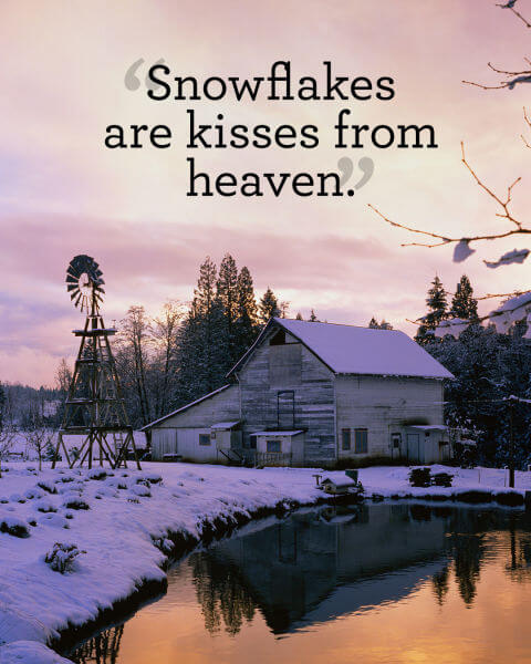 18 Absolutely Beautiful Winter Quotes About Snow - Our ...
