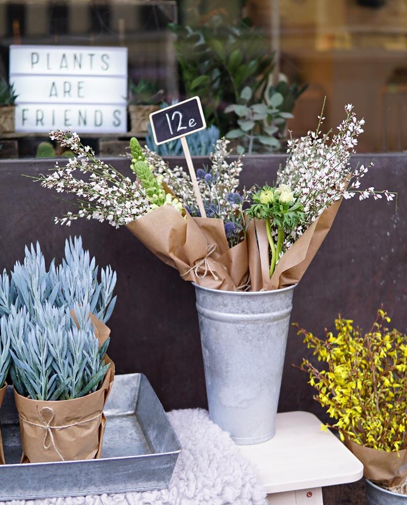 kukkakauppa, leikkokukat