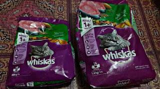 Merk Makanan Kucing yang Bagus dan Murah Whiskas