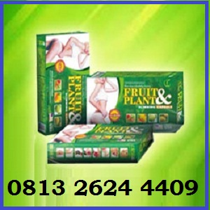 obat-pelangsing-badan-fruit-plant