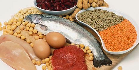 alimentation-saine-bases-goldandgreen-protides