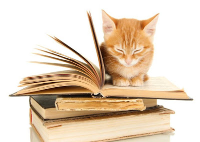 Cat training books are a necessity for cat owners