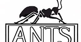 Hands On Math: Teaching Proportions Using Ant Trivia
