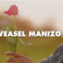 Video   Weasel(Radio & Weasel) -TOKYAYITABA    Download