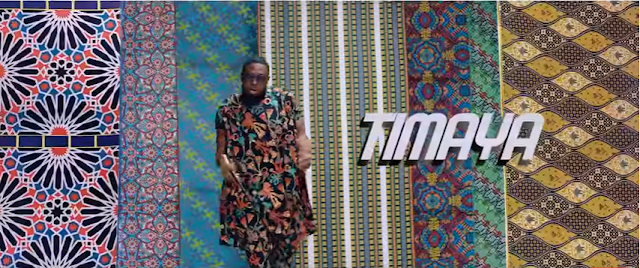 [VIDEO] Watch 'Telli Person' by Timaya ft Phyno, Olamide