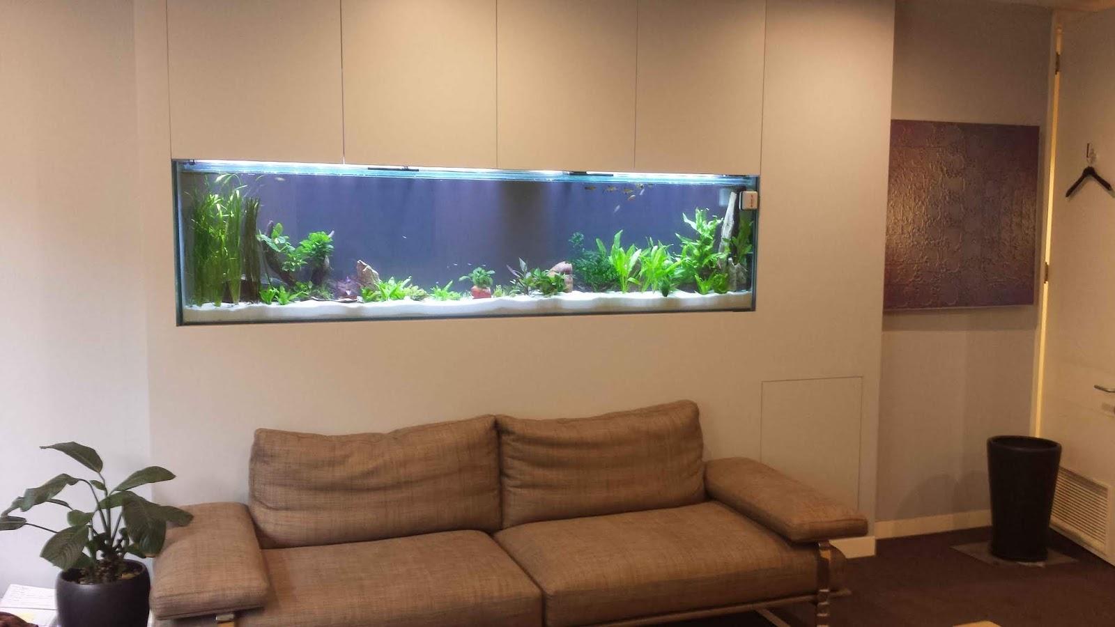 46 Desain Aquarium Cantik Dan Unik Anti Mainstream Rumahku Unik Macam macam bentuk aquarium