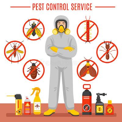 شركة مكافحة حشرات بالدمام وافضل رش مبيدات في الدمام