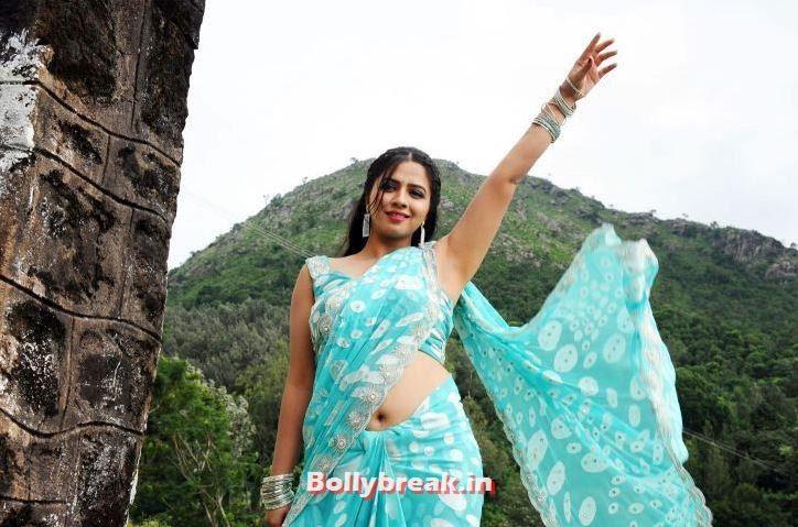 , Nisha Shah Hot Pics in Saree - 2014 Photoshoot