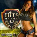 hits43 Download   Hits Sertanejo 4.3 (2012)