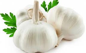 ialah salah satu bahan rempah dapur yang bisa juga ngasih faedah begitu besar da Bawang putih (Allium sativum, Linn)