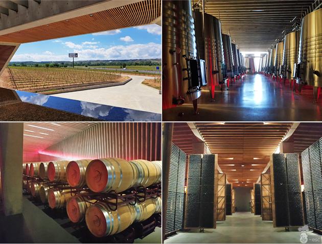 Enoturismo en Bodegas Portia: fabricación y envejecimiento del vino