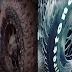 Turn around damaged tires to make them useful