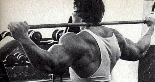 Arnold Schwarzenegger Working Out How To Build Muscles