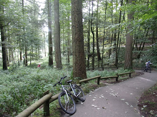steep path through woodland pushing bikes uphill