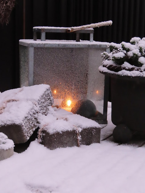 Jeg har pyntet i hagen til jul. Julepynten med snødryss på. IMG_0074