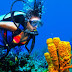 Five Reasons Why You Should Try Scuba Diving
