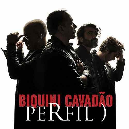ADRIANA CALCANHOTO PERFIL BAIXAR CD DA