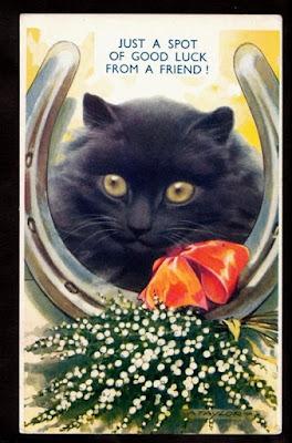 Black Cat Hell Drivers