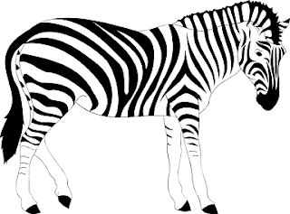 10 lines about Zebra in Hindi