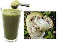 Manfaat buah mengkudu atasi osteoporosis Manfaat buah mengkudu untuk obat osteoporosis