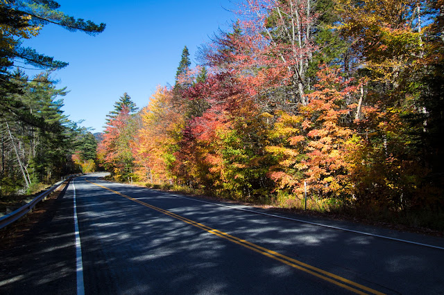 Foliage at Kancamagus Hwy e White mountains