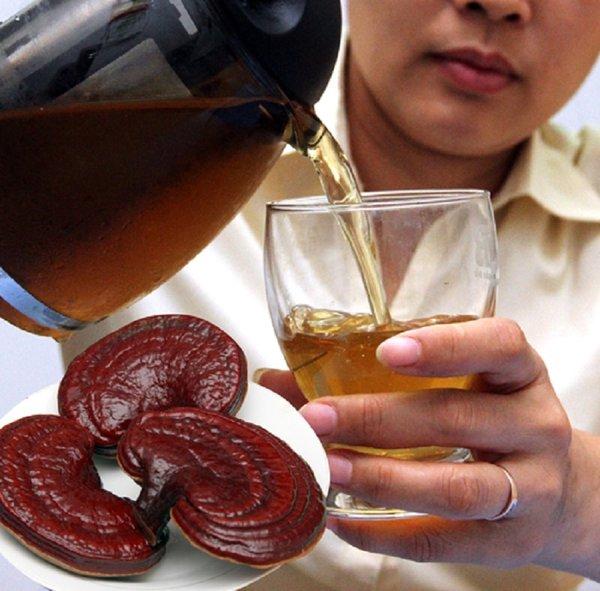 Pha trà nấm linh chi đỏ sử dụng hiệu quả