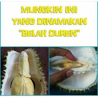 Gambar Display Picture BBM Lucu Unik Gokil