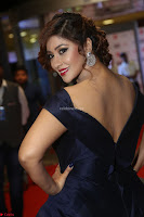 Payal Ghosh aka Harika in Dark Blue Deep Neck Sleeveless Gown at 64th Jio Filmfare Awards South 2017 ~  Exclusive 043.JPG